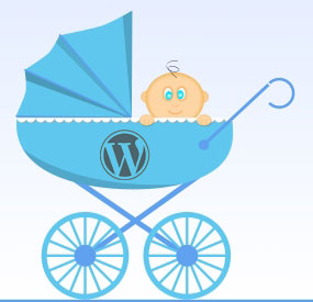 how to build a WordPress child theme