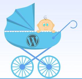 how to build a WordPress child theme